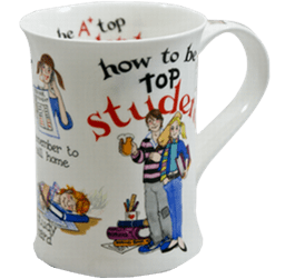 Bild von Dunoon Cotswold How to be a top Student