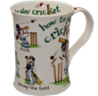 Bild von Dunoon Cotswold How to Play Cricket
