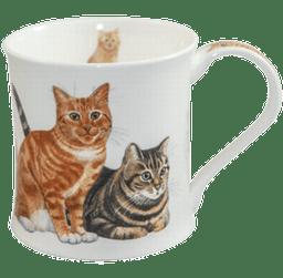 Bild von Dunoon Wessex Ginger Cats & Kittens