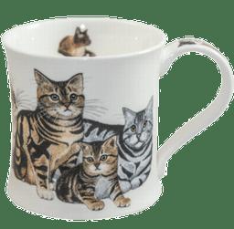 Bild von Dunoon Wessex Tabby Cats & Kittens