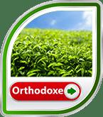 Bild für Kategorie Orthodoxe