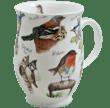 Bild von Dunoon Suffolk Birdlife Rotkehlchen
