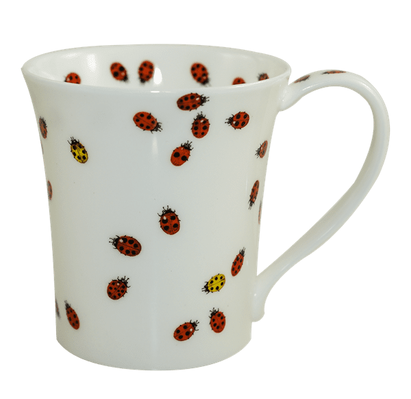 Bild von Dunoon Jura Flitterbugs Ladybird