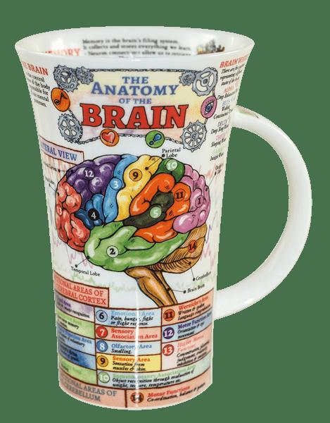 Bild von Dunoon Glencoe The Brain