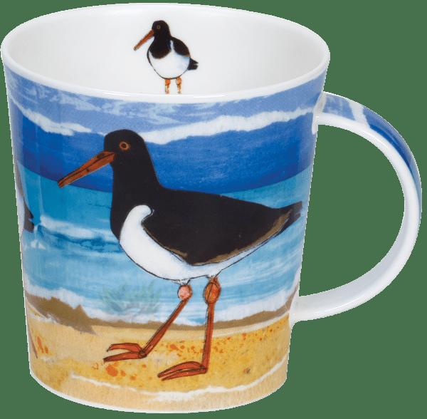 Bild von Dunoon Lomond Shore Birds Oystercatcher