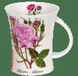Bild von Dunoon Richmond Rosa Botanica Fantin Latour, Bild 1