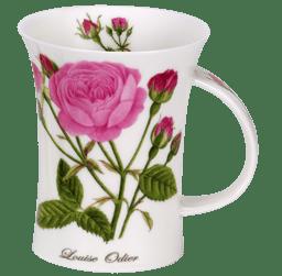 Bild von Dunoon Richmond Rosa Botanica Louise Odier