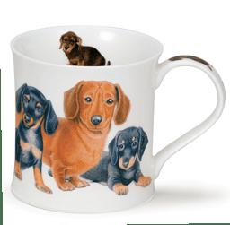 Bild von Dunoon Wessex Designer Dogs Teckel