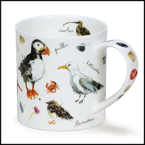 Bild von Dunoon Orkney Coastal Birds