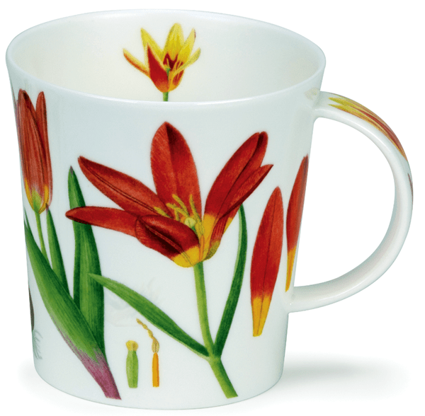 Bild von Dunoon Lomond Wild Tulips