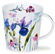 Bild von Dunoon Cairngorm Country Garden Iris, Bild 1