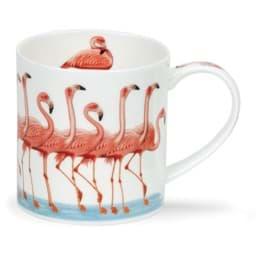 Bild von Dunoon Orkney Show Offs Flamingo