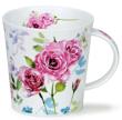 Bild von Dunoon Cairngorm Country Garden Rose, Bild 1