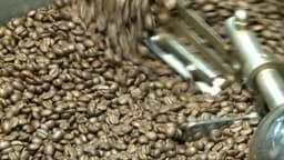 Bild von Luxus-Bohnen der Extraklasse-Die exklusivsten Kaffeesorten der Welt