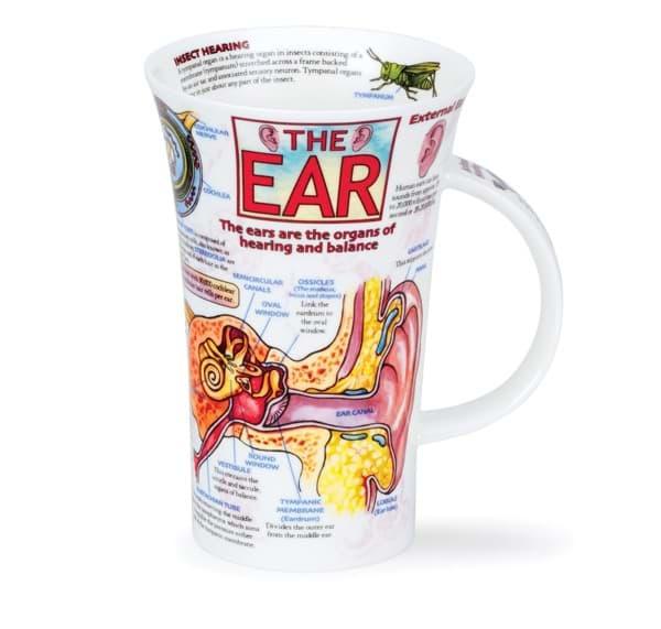 Bild von Dunoon Glencoe The Ear