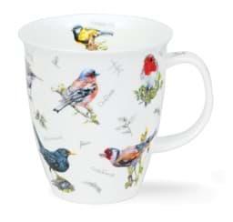 Bild von Dunoon Nevis Birdwatch Chaffinch