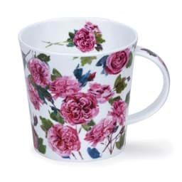 Bild von Dunoon Cairngorm Cottage Blooms Rose