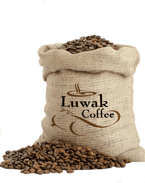 Bild von Kopi Luwak Kaffee